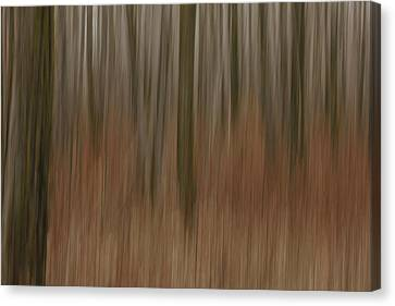 Woodland Dreams Canvas Print by Penny Meyers