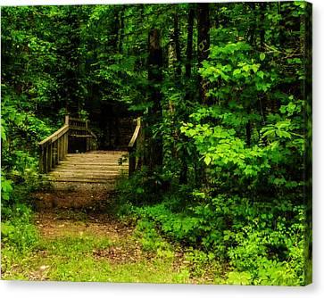 Woodland Foot Bridge Canvas Print