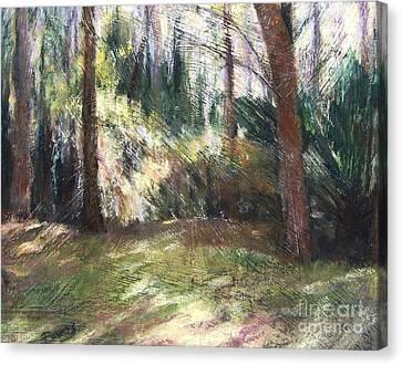 Woodland Shadows Canvas Print