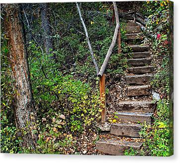 Woodland Stairs In Aspen Colorado Canvas Print