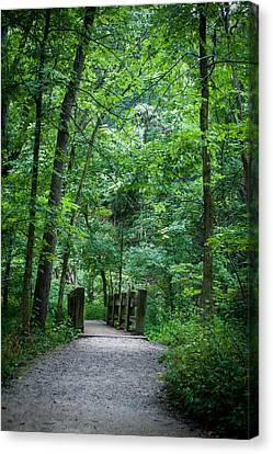 Canvas Print featuring the photograph Woodland Trail by Wayne Meyer