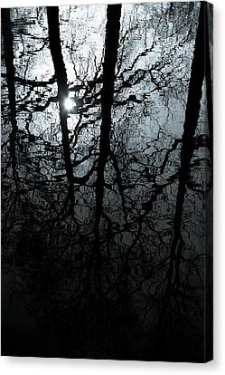 Woodland Waters Canvas Print by Dave Bowman
