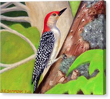Canvas Print featuring the painting Woodpecker by Janet Greer Sammons
