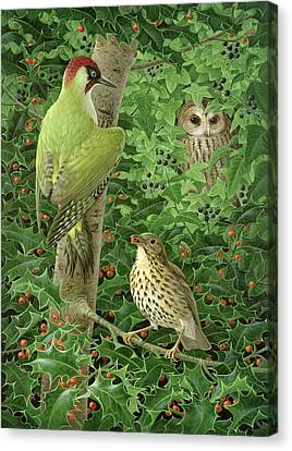 Bough Canvas Print - Woodpecker Owl And Thrush  by Birgitte Hendil