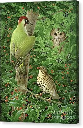 Woodpecker Owl And Thrush  Canvas Print by Birgitte Hendil