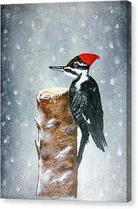 Woodpecker Canvas Print by Valorie Cross