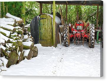 Woodshed In Winter Canvas Print by David Birchall