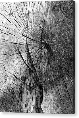 Woodwork...shades Of Grey Canvas Print