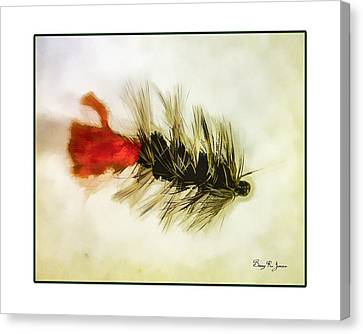 Fly Fishing - Woolly Bugger Canvas Print by Barry Jones