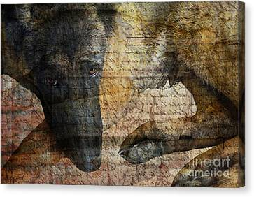 Wordless Canvas Print by Judy Wood