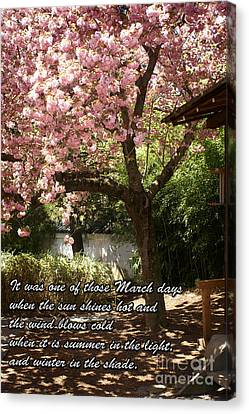Words Of The Seasons Canvas Print