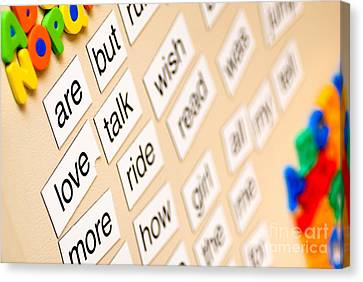 Words On The Refrigerator Canvas Print by Amy Cicconi