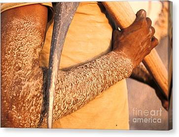 Working Conditions Canvas Print by Franck Metois