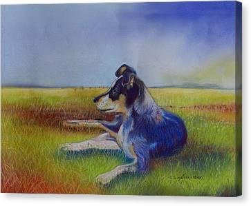 Working Man's Dog Canvas Print by Sandra Sengstock-Miller