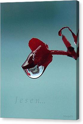 Canvas Print featuring the photograph World In A Drop by Marija Djedovic