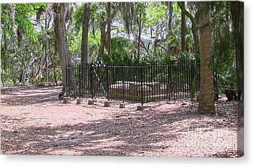 Wormsloe Cemetery Plot Canvas Print by D Wallace