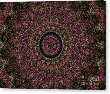 Woven Kaleidoscope Canvas Print by R McLellan
