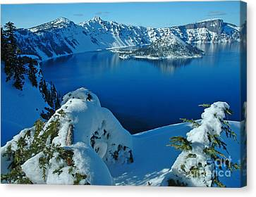 Canvas Print featuring the photograph WOW by Nick  Boren