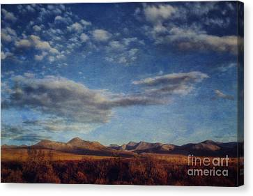 Wrapped In Autumn  Canvas Print by Priska Wettstein