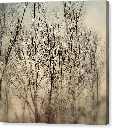 Wrapped In Snow Canvas Print by Michelle Ayn Potter