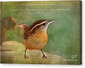 Wren With Verse Canvas Print by Debbie Portwood