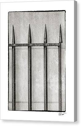 Wrought Iron Gate In Black And White Canvas Print by Brenda Bryant