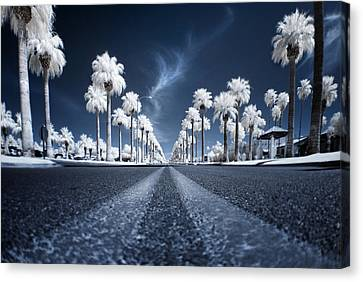Street Canvas Print - X by Sean Foster