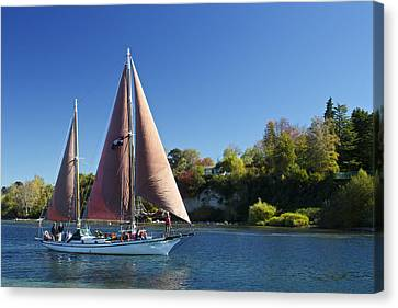 Yacht Fearless On Lake Taupo  Canvas Print by Venetia Featherstone-Witty