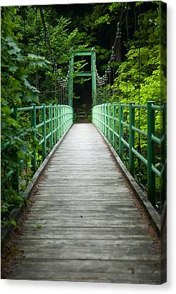 Yagen Forest Bridge Canvas Print