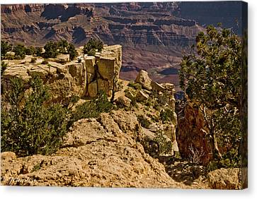 Canvas Print featuring the photograph Yaki Point 3 The Grand Canyon by Bob and Nadine Johnston