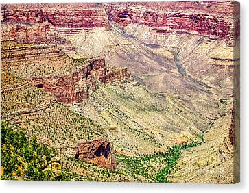 Yaki Point View Of The Grand Canyon Canvas Print by Bob and Nadine Johnston
