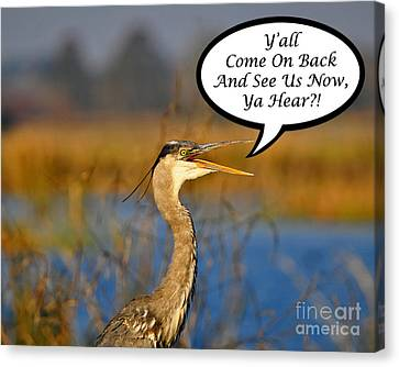 Yall Come On Back Heron Card Canvas Print