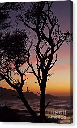 Yaquina Head Dusk Sixty Canvas Print