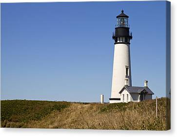 Yaquina Head Lighthouse 3 Canvas Print by David Gn