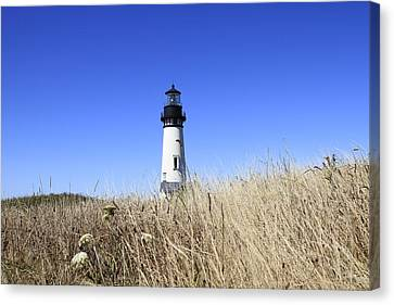 Yaquina Head Lighthouse Canvas Print by David Gn