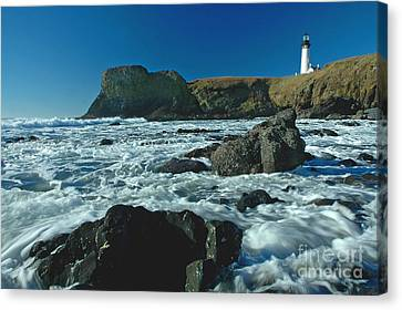 Yaquina Head Lighthouse Canvas Print by Nick  Boren