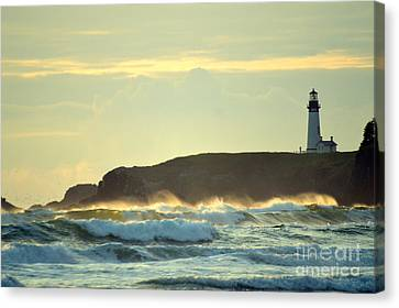 Yaquinas Rolling Waves Canvas Print by Sheldon Blackwell