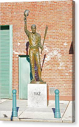Yaz Canvas Print by Mike Martin