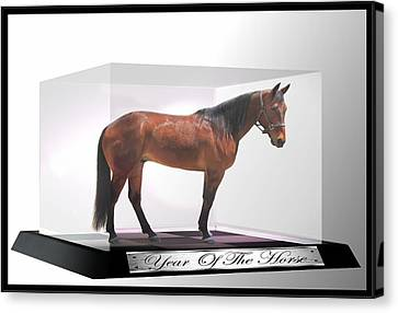 Bay Horse Canvas Print - Year Of The Horse by Davandra Cribbie