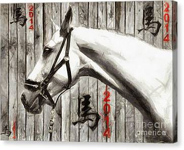 Year Of The Horse - Drawing Canvas Print