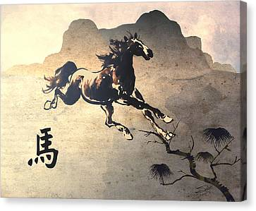 Year Of The Horse Canvas Print by Schwartz