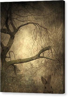 Year Of The Rabbit Canvas Print by Gothicrow Images