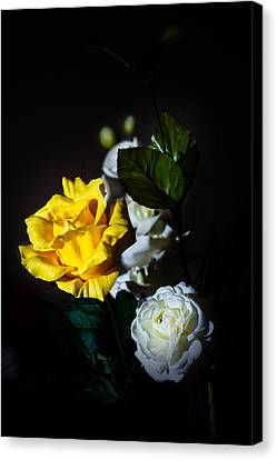 Canvas Print featuring the photograph Yellow And White by Cecil Fuselier