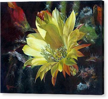 Yellow Argentine Giant Cactus Flower Canvas Print