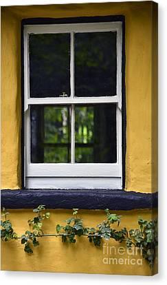 Yellow Barn Window Canvas Print by Svetlana Sewell