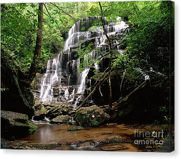 Yellow Branch Falls Canvas Print