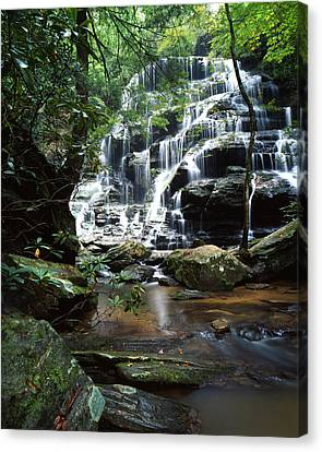 Yellow Branch Falls Canvas Print by Ray Mathis