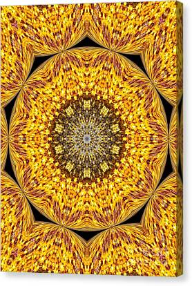 Yellow Burst  Canvas Print by Annette Allman