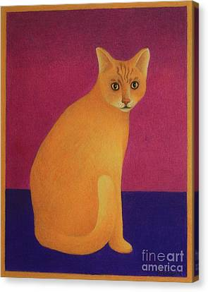 Yellow Cat Canvas Print by Pamela Clements
