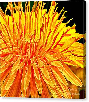 Yellow Chrysanthemum Painting Canvas Print by Bob and Nadine Johnston